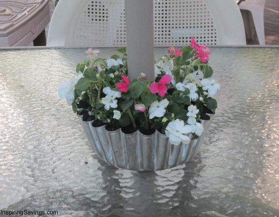 old pan transformed into plant holder