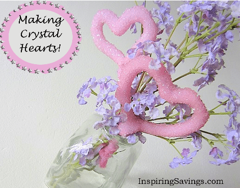 Growing crystal hearts is a terrific science experiment for exploring chemistry with a heart theme! Learn how to grow Borax Crystal Valentine's Day Heart