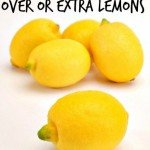 Have you ever purchased lemons and had to throw a few out You had had all the intentions of using them and never did. Come check out how you can prevent that with these tips