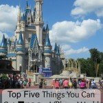 Top Five Things you can Get Free at Disney World