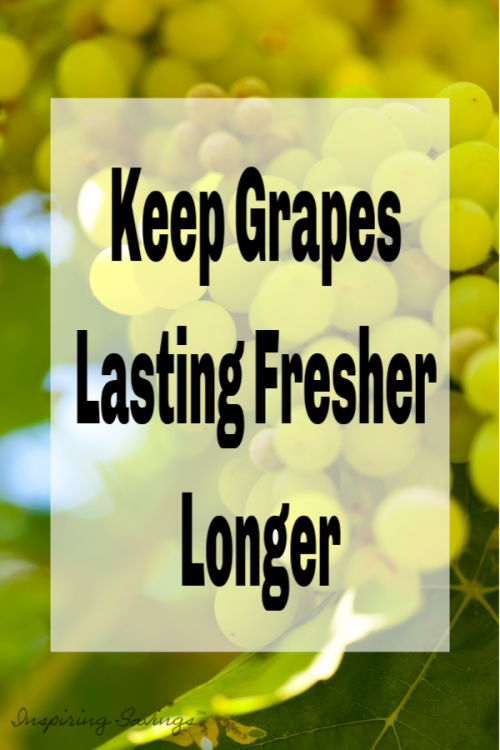 Did you know that there is a way to clean & store your grapes that will impact on how fast they stay fresh? Real food means lots of fruits and veggies - clean them naturally without chemicals to preserve the goodness A quick and easy way to wash grapes (and other fruits/vegetables)!