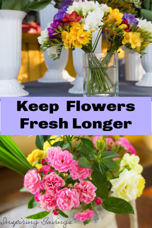 Fresh Flowers in Vase with Text Overlay - Keep Flowers Fresh Longer