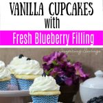 Blueberry cupcakes with homemade filling