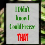 grocery food you can freeze