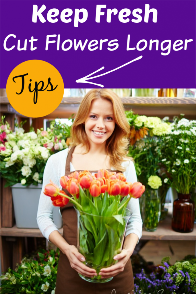 """Woman hold freshly cut tulips in clear vase with text overlay """"Keep Fresh Cut Flowers Longer"""""""