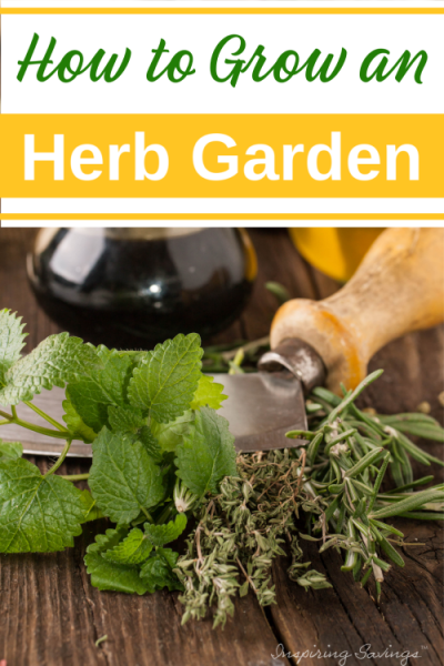 Grow Your Own Kitchen Herb Garden e1579463864415
