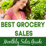 Best Grocery Sales Month to month sales
