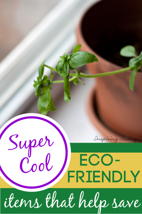 Herb in pot on window sill growing - eco-friendly items that help save money