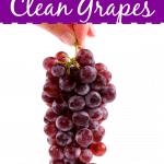 Clean And Prepare Fresh Grapes Keep Grapes Fresh Longer e1577803776146