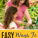 Ways to Save on Fresh Produce e1577825436102