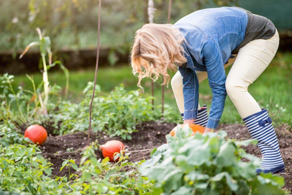 Woman working in her home grown garden
