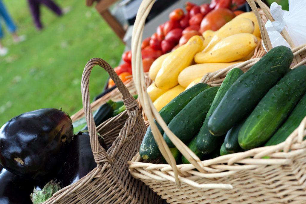 Fresh produce in basket from farmers market