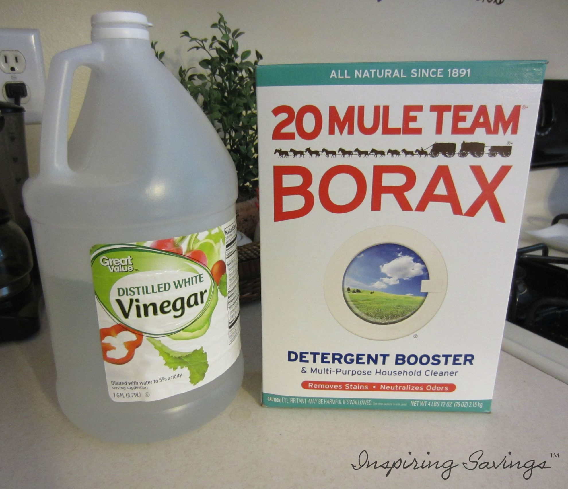 Box of 20 Mule Team Borax and gallon of vinegar - ingredients needed for All Natural Kitchen Degreaser