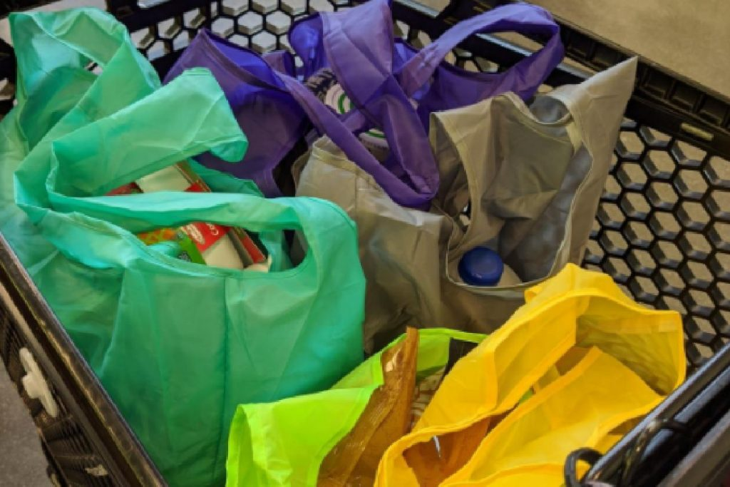 reusable shopping bags - gifts that save money
