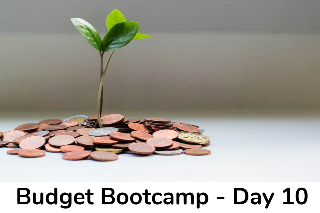 Budget Bootcamp - day 10