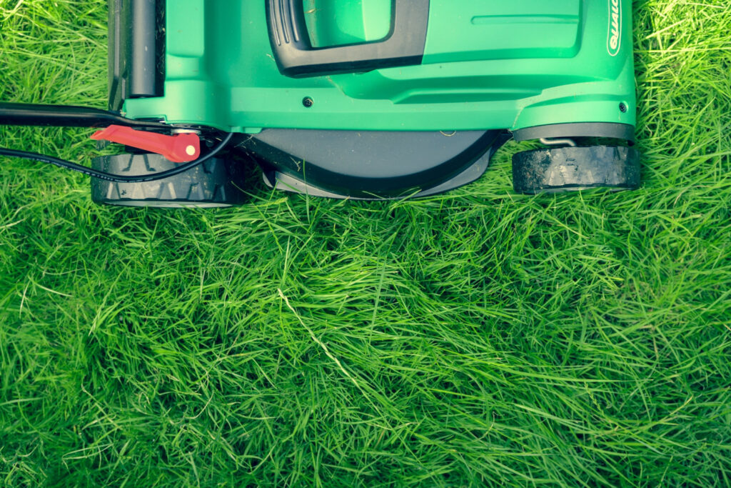 Lawn Mower - hire a professional service to help
