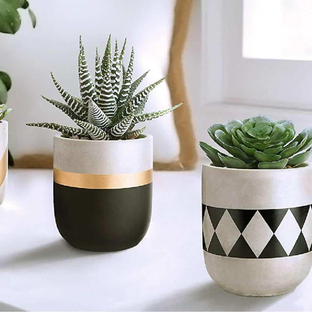 Concrete Planters set of 3